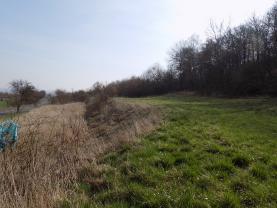pozemek (Prodej, pozemek, 7221 m2, Řehlovice - Brozánky), foto 4/5