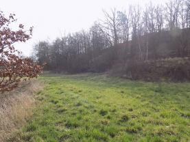 pozemek (Prodej, pozemek, 7221 m2, Řehlovice - Brozánky), foto 2/5