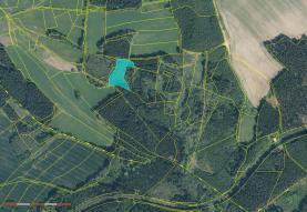 Prodej, les, 5.043 m2, Žirovnice