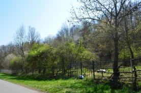 (Prodej, pozemek, 10324 m2, Sobáčov), foto 3/7