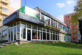 Pronájem, obchod a služby, 1165 m2, Plzeň, ul. Revoluční