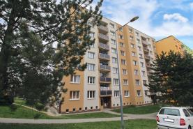 Prodej, byt 1+1, 39m2, Horní Bříza, ul. Jedlová