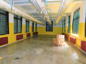 (Prodej, skladový areál, Kraslice, ul. Čs. armády, 8338 m2), foto 3/49