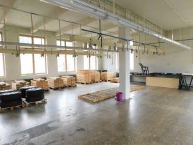 (Prodej, výrobní areál, Kraslice, ul. Čs. armády, 8338 m2), foto 3/49