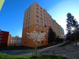 Pronájem, byt 1+1, 41 m2, Jindřichův Hradec, sídl. Vajgar