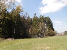 Prodej, les 30 273 m2, Polesí u Počátek