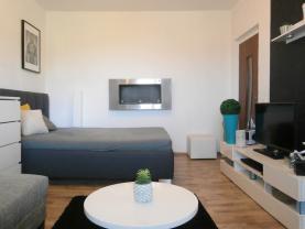 (Flat 1+1, 36 m2, Karlovy Vary, Ostrov, Štúrova)