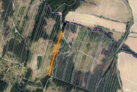 Woodland, 6647 m2, Olomouc, Nová Hradečná