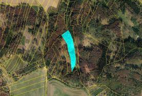 Woodland, 13335 m2, Třebíč, Střítež