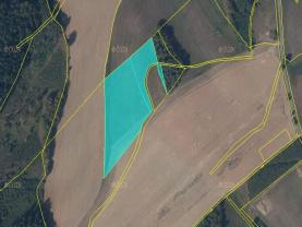 Meadow, 20628 m2, Ústí nad Orlicí, Dolní Dobrouč