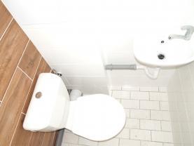 toaleta (Pronájem, obchod a služby, Louny, ul. Pivovarská), foto 3/8