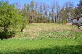 Prodej, pozemek, 7861 m2, Provodov-Šonov - Kleny