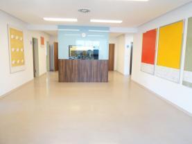 Prodej, zdravotnické zařízení - 7 ordinací, Praha 8 - Troja