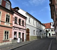 Podnájem, nebytový prostor, 20 m2, Česká Lípa, ul. Zámecká