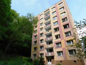 Flat 3+1, 63 m2, Most, Litvínov, Tylova
