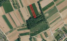 Prodej, zahrada, 1158 m2, Pohořelice