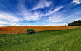 Field, 10309 m2, Semily, Nová Ves nad Popelkou