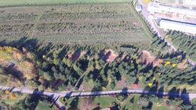 Prodej, stavební pozemek, 1345 m2, Libštát