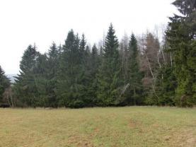 (Prodej, les, 13490 m2, Studnice, Hlinsko), foto 3/3