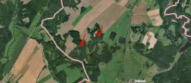 Prodej, les, 13490 m2, Studnice, Hlinsko