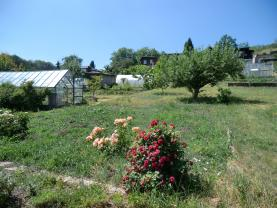 Zahrada (Prodej, zahrada, 515 m2, Kadaň, ul. Nová Kolonie), foto 4/12