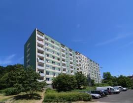 Prodej, byt 2+1, 59 m2, DV, Jirkov, ul. Pionýrů