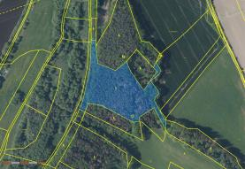 Prodej, les, 16361 m2, Písek - Hradiště u Písku