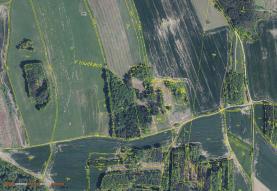 Prodej, lesní pozemky, 76783 m2, Skály