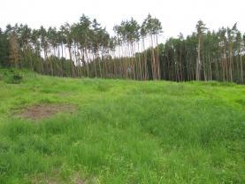 Prodej, lesní pozemek, 15414 m2, Kestřany - Zátaví