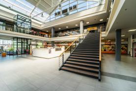 Pronájem, obchodní prostory, 66,56 m2, Plzeň - Doubravka