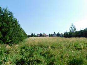 Prodej, stavební pozemek 9668 m2, Buštěhrad