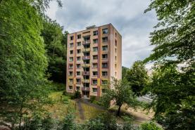 Prodej, byt 3+1, 64 m², DV, Litvínov, ul. Tylova