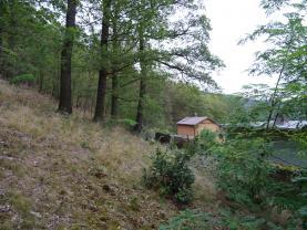 Prodej, les, 9589 m², Všenory