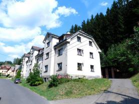 Prodej, byt 2+1, 70 m², Plavy