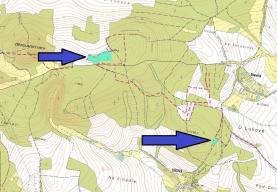Prodej, les,16261 m2, Manětín