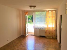 (Flat 1+1, 43 m2, Děčín, Příčná)