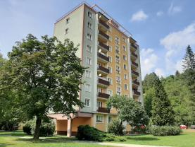 Pronájem, byt 2+1, 48 m2, Vsetín, ul. Luh
