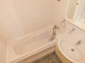 Koupelna (Flat 2+1, 62 m2, Chomutov, Kamenný vrch)