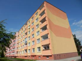 Flat 1+1 for rent, 42 m2, Cheb, Šeříková