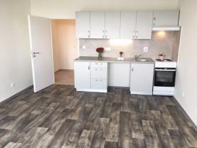 Flat 1+kk for rent, 32 m2, Ostrava-město, Ostrava, Milana Fialy