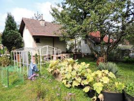 Hut, Ostrava-město, Ostrava