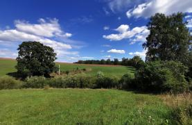 Prodej, pozemky, 8808 m2, Nová Ves nad Popelkou - Semily