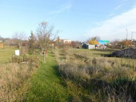Prodej, zahrada, 578 m², Sadská