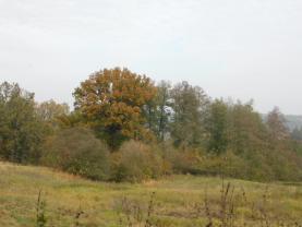 Prodej, pozemek, 1816 m2, Stráž u České Lípy