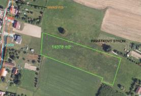 Prodej, orná půda, 14378 m2, Albrechtice