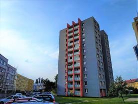 Pronájem, byt 1+kk, 29 m², ul. Studentská