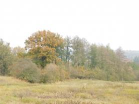 pozemek (Prodej pozemku, 1816 m², Stružnice), foto 3/4