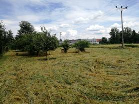 Prodej pozemku k bydlení, 3923 m², Ostrava - Hrabová