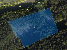 Prodej lesa, 86353 m², Jasenná