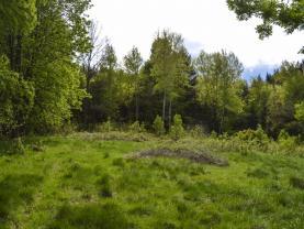 Prodej pozemku, 2831 m2, Liberec, ul. Nad Kyselkou